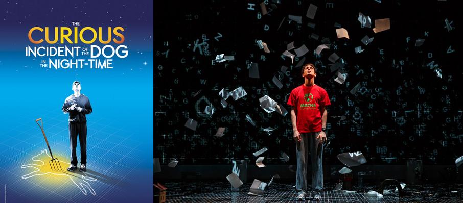 The Curious Incident of the Dog in the Night-Time at Paramount Theatre