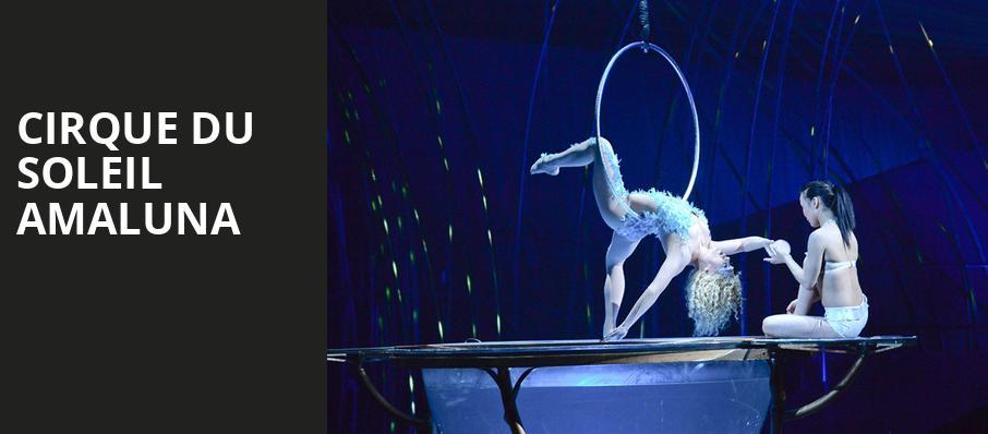 Cirque Du Soleil Amaluna Grand Chapiteau At Marymoor Park